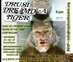 """DRUSI DREAMED A TIGER"" FALL 2012 / 94 NORMAN STOREFRONT SPACE GREENPOINT, BROOKLYN (POSTER ART BY ROBERT STRONG)"