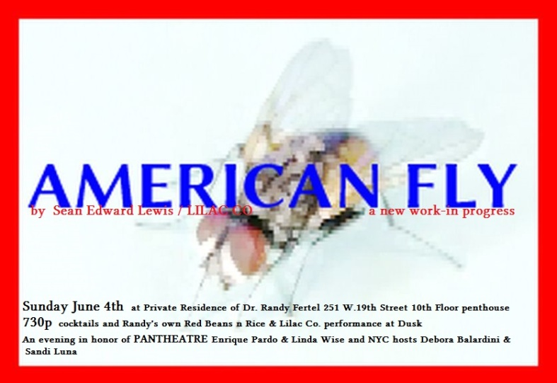 AMERICANFLY sunday june 4